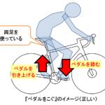 自転車で長い距離を乗るには?(乗り方編)